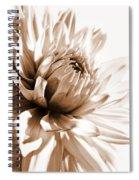 Dahlia Sepial Flower Spiral Notebook