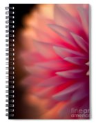 Dahlia Sunset Spiral Notebook