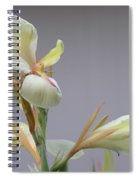 Dainty Orchid Spiral Notebook