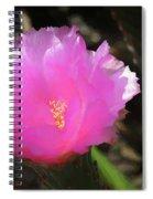 Dainty Pink Cactus Flower Spiral Notebook
