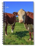 Cattle Andover New Hampshire Spiral Notebook