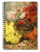 Daisies, Begonia, And Other Flowers In Pots Spiral Notebook