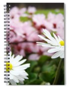 Daisies Flowers Art Prints Spring Flowers Artwork Garden Nature Art Spiral Notebook