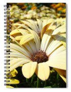 Daisies Flowers Landscape Art Prints Daisy Floral Baslee Troutman Spiral Notebook