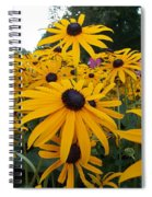 Daisies From Niagara Spiral Notebook