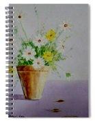 Daisies In Pot Spiral Notebook