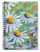 Daisies In Spring Spiral Notebook