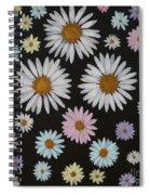 Daisies On Black Spiral Notebook