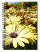 Daisies Yellow Daisy Flowers Garden Art Prints Baslee Troutman Spiral Notebook