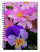 Daisy And Pansy Spiral Notebook