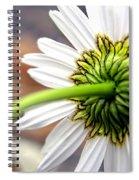 Daisy Back Spiral Notebook