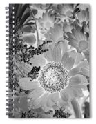 Daisy Bouquet In Black And White Spiral Notebook