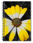 Daisy Crown Spiral Notebook