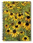 Daisy Daisy Spiral Notebook