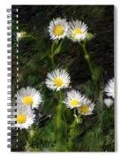 Daisy Day Fantasy Spiral Notebook