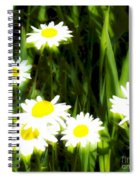 Daisy Dream Spiral Notebook