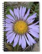 Daisy Fleabane Spiral Notebook