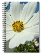 Daisy Flower Garden Artwork Daisies Botanical Art Prints Spiral Notebook
