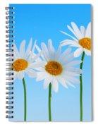 Daisy Flowers On Blue Spiral Notebook