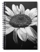 Daisy I Spiral Notebook