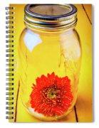 Daisy In Glass Jar Spiral Notebook