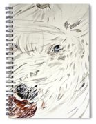 Daisy In The Snow Spiral Notebook