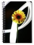 Daisy In White Spiral Notebook