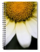 Daisy Smile Spiral Notebook