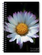 Daisy Under Sun Spiral Notebook