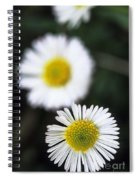 Daisys Spiral Notebook