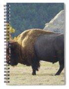Dakota Badlands Majesty Spiral Notebook