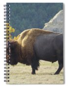 Dakota Badlands Majesty Spiral Notebook