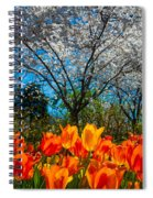 Dallas Arboretum Tulips And Cherries Spiral Notebook