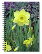 Dallas Daffodils 83 Spiral Notebook