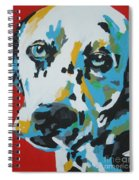 Dalmation Spiral Notebook