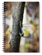 Dragonflies Need Love Too Spiral Notebook