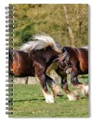 Dance Of The Gypsy Spiral Notebook