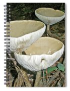 Dance Of The Mushrooms Spiral Notebook