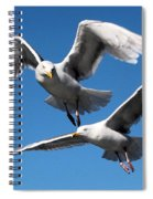 Aerial Dance Of The Seagulls Spiral Notebook