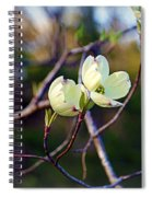 Dancing Dogwood Blooms Spiral Notebook