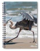 Dancing Heron #1/3 Spiral Notebook
