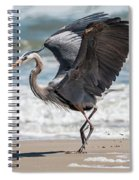 Dancing Heron Triptych Spiral Notebook