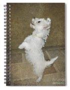 Dancing Puppy Spiral Notebook