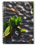 Dancing Sunlight Spiral Notebook