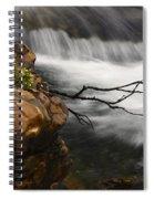 Dancing Waters 3 Spiral Notebook