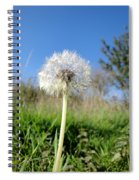 Dandelion Clock Spiral Notebook