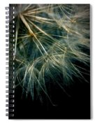 Dandelion Eighty Six Spiral Notebook