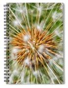 Dandelion Explosion Spiral Notebook