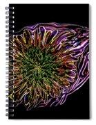 Dandelion Eye In Pink Spiral Notebook