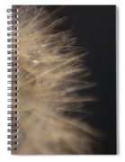 Dandelion Fifty Seven Spiral Notebook